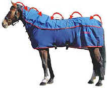 Magnetic Pulsed Horse Rugs